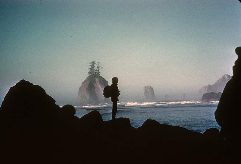 A silhouette of a hiker at Olympic Beach